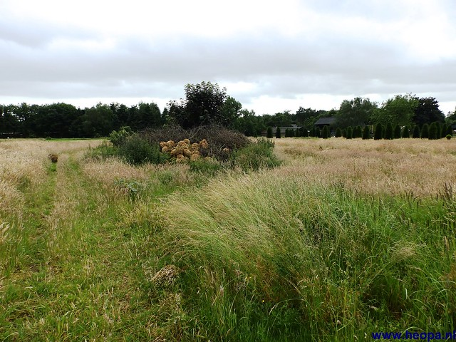14-06-2014  Veenendaal        40 Km  (44)