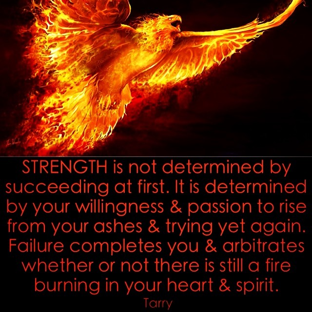 One of my favourite symbols - The Phoenix. A true symbol of life & strength. #motivation #instaquotes #life #lifequotes #failure #lessons #strength #power #rise #passion #fire #love #business #businessquotes #success #mistakes #lessons #faith #hope #phoen