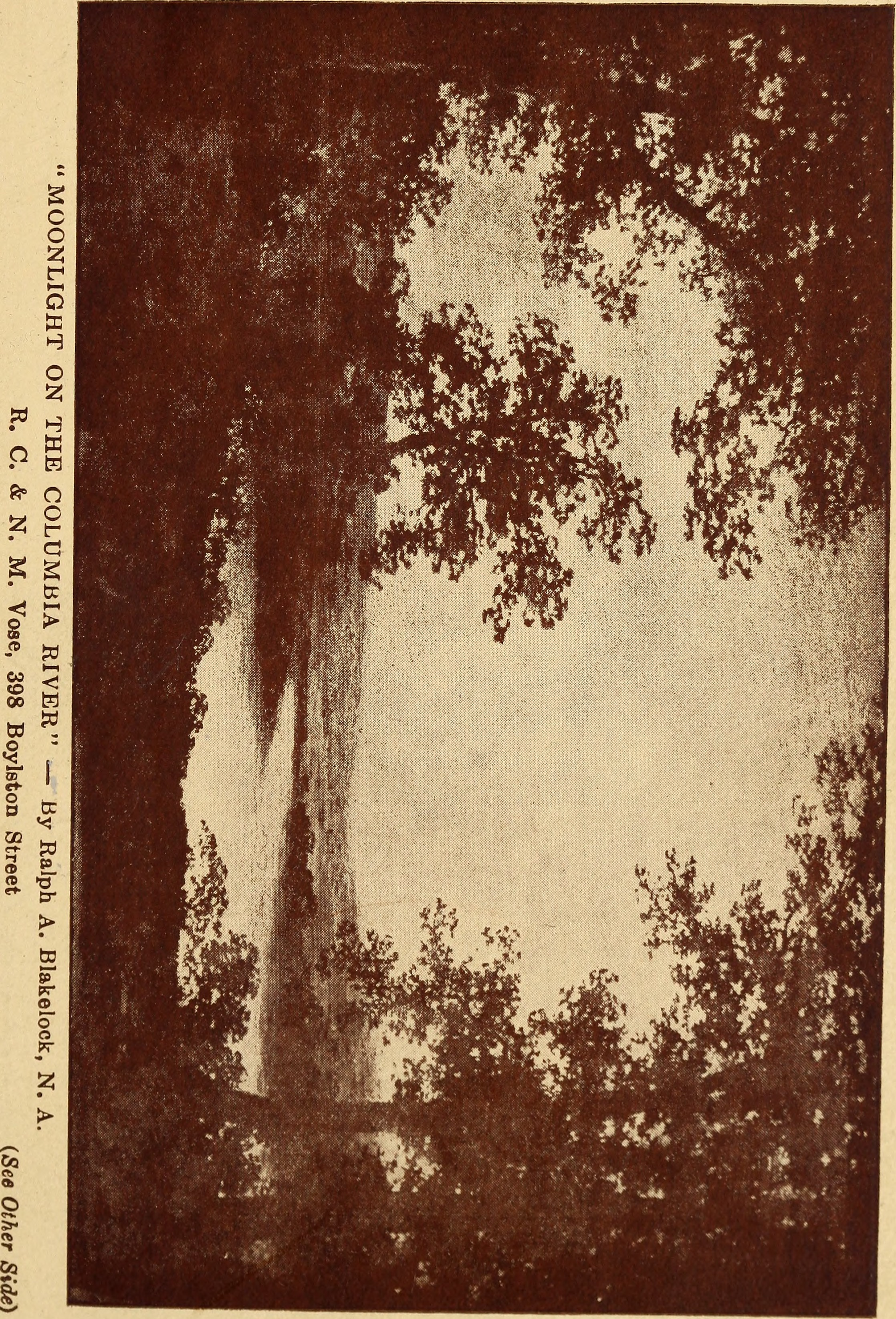 Image from page 8 of