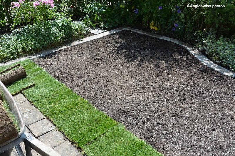 Laying the lawn