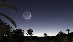 #Gabes by night • #new #igersfrance #tunisia #tunisie #moon