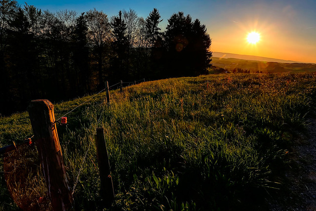 Sunset 4L8A1031