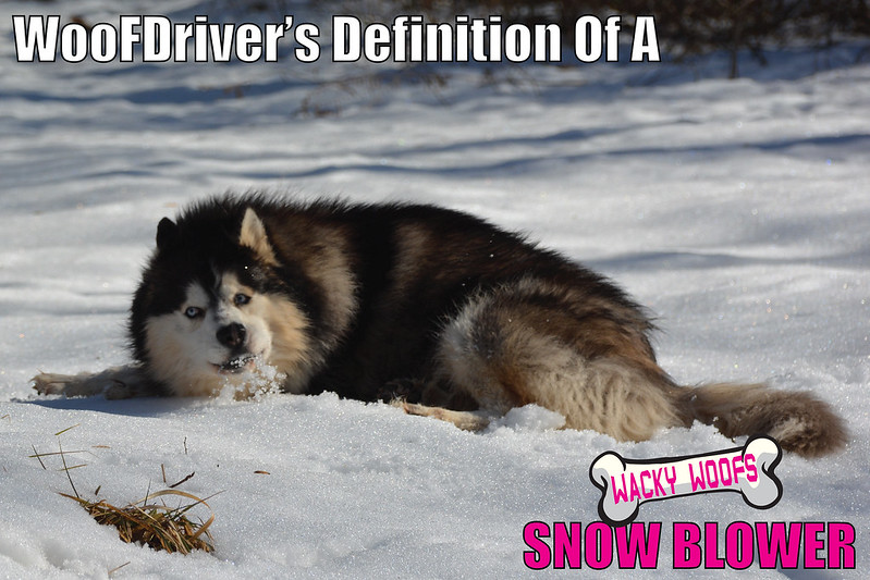 WooFDriver's Definition Of A Snow-Blower