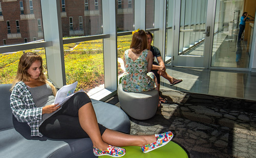 Students relax in the second floor atrium of Wells Hall. The yellow and green plants are part of MSU's Green Roof Research Program. (Photo/D.L. Turner)