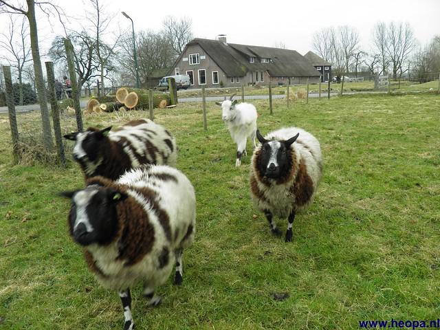 18-02-2012 Woerden (24)
