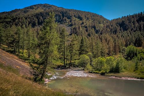 crête nature eau rivière clarée névache hautesalpes sapin arbre conifère mélèze épicéa pierre été calme paisible ngc