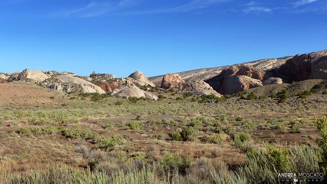 Sandstone, Dinosaur National Monument - Utah