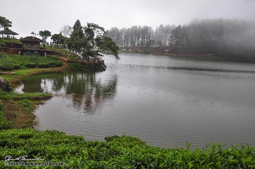 srilanka beautifulsrilanka srilankatourism charithmania charithmaniaphotography srilankamist sembuwattalake sembuwattalakeelkaduwa sembuwattalakematale mistsrilanka mistkandy sembuwattalakematalesrilanka sembuwattalakesrilanka sembuwattasrilanka