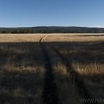 Bechler Meadows