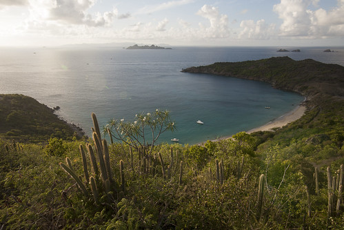 sunset cactus west classic saint canon de french island eos 1 soleil mark coucher tropical 5d canon5d caribbean tamron plage barth stbarts mk stbarth coucherdesoleil guadeloupe antilles cocotier indies gwada 971 cocotiers île caraibes sbh 1735 frenchwestindies tamron1735 gustavia colombier fwi karukera barthelemy tropiques saintbarts antillas saintbarth saintbarthelemy i saintbart barthélémy f284 colombierbeach 5dmark1 ansecolombier karukéra
