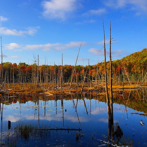 automne quebec laurentides sainthippolyte sthippolyte