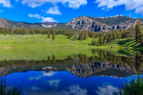 morning blue summer usa white lake reflection tree green nature clouds canon eos day upsidedown oldfaithful wideangle yellowstonenationalpark yellowstone canoneos lanscape wy canoneosrebel canoneosrebelt3