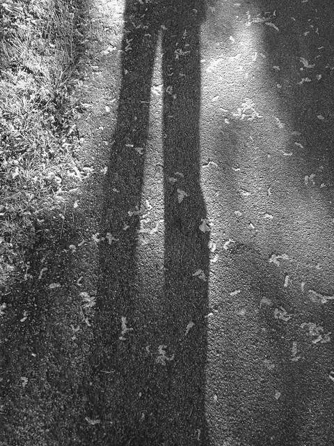 Autoportrait en géant - V 2
