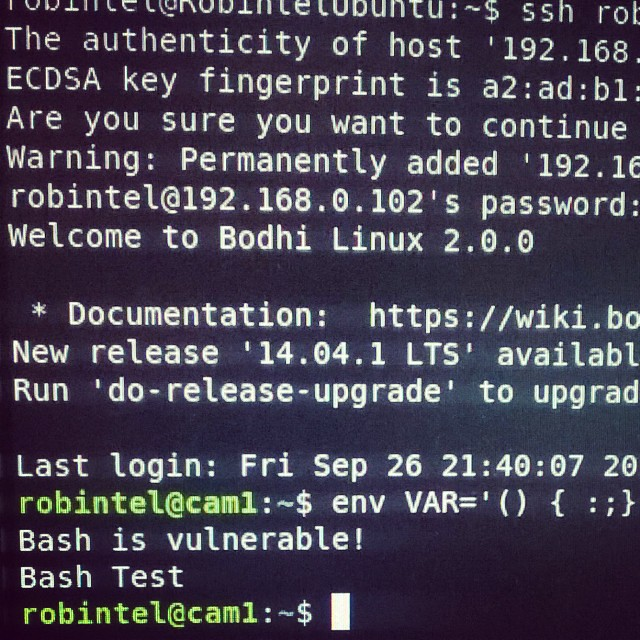 Te-am prins, mișelule! #bash #shellshock Fix: sudo apt-get
