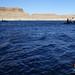 hidden-canyon-kayak-lake-powell-page-arizona-IMGP7238 by Lake Powell Hidden Canyon Kayak