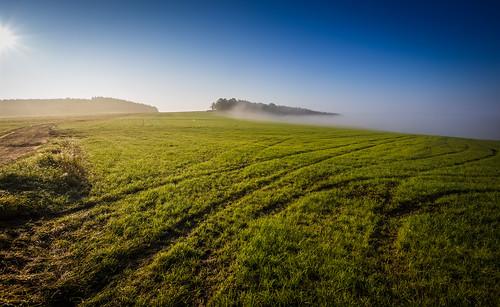 morning blue sky mist color colour green beautiful field fog canon germany landscape deutschland countryside nebel view saxony feld spuren wiese sachsen landschaft morgen ausblick indiansummer erzgebirge latesummer altweibersommer oremountains eos6d ef1635mmf28lii