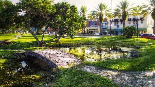 youcanalwaysgodowntown daytonabeachflorida downtown bridge pond park palmtrees garden businesses scenic landscape