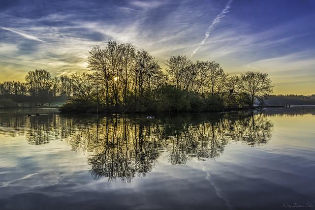 Reflection at sunrise