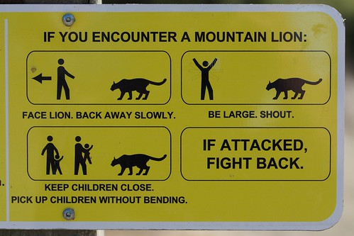 """""""If you encounter a mountain lion..."""" sign 
