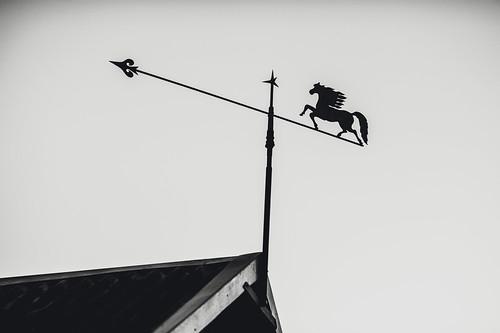 Wind vane #269/365