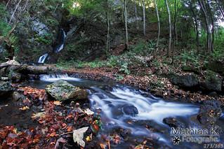 Waldwasserfall | Projekt 365 | Tag 273