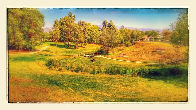 IMG_20140902_111817650_HDR-EFFECTS