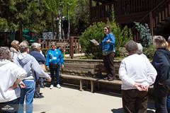 Spring Quilt Retreat 2017-51