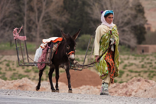 Berber woman with Donkey