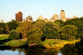 Central Park Pond | by MrHicks46