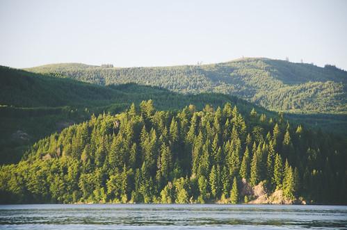 park travel trees sunset lake water washington nikon hills wa nikkor mossyrock d7000 nikond7000 mossyrocklake mossyrockstatepark 18105mmf3556gedafsvrdx