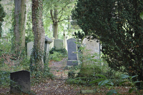 Cathcart cemetery 21/09/14 | by Dave S Campbell