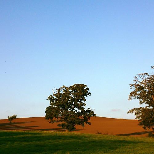 #Cheshire #AlderleyEdge #englishcountryside #evening #Autumn | by Steve_Mc