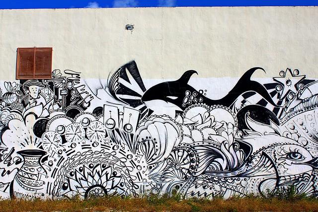 Killer Whale Graffiti