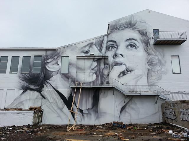 Guido Van Helten...Reykjavik, Iceland...