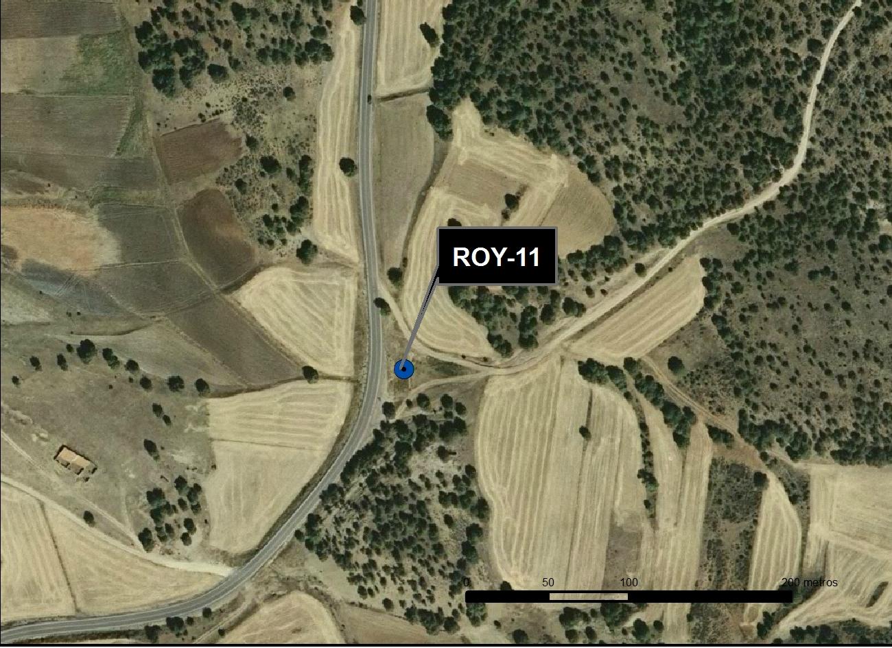 ROY_11_M.V.LOZANO_ FONTARRÓN DE LA TORRE_ORTO 1
