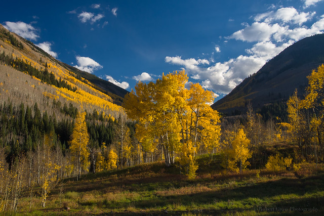 Maroon Creek Aspen Autumn