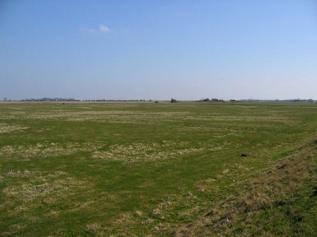 Marshes near Rye