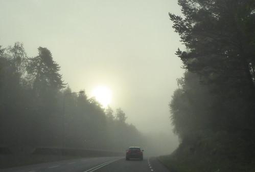 fog sverige dimma ditte46 frånbilen