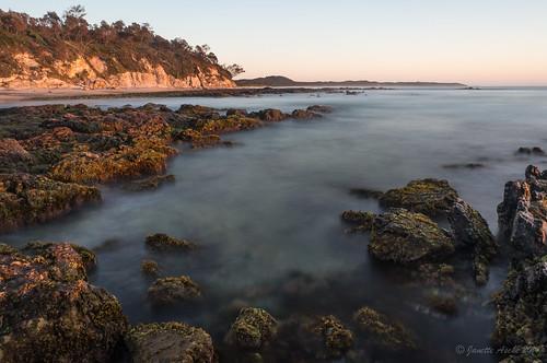 ocean longexposure seaweed water sunrise rocks australia coastal le nsw newsouthwales coastline 2014 yuraygirnationalpark diggerscamp sonynex6