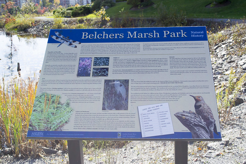 Belchers Marsh