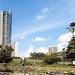 Laguna Venezuela, Jardín Botánico de Caracas (Caracas / Venezuela)