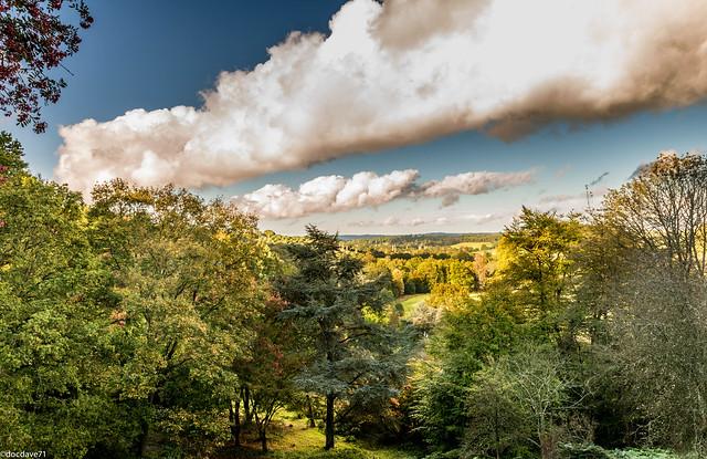 04Oct2014_Winkworth Arboretum NT_0674.jpg