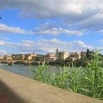Viajefilos en Florencia 08
