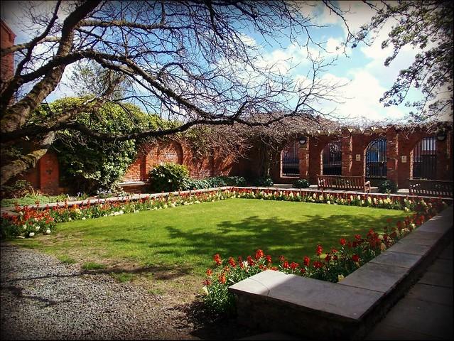 Wilberforce House Rear Garden..