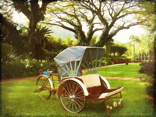 rickshaw penang transport birgittasjöstedt textures texturen topaz topazimpression2 outdoor oldfashioned oldstyle malaysia batuferringhi urlaub holidays gardens park photoborder cycle fahrzeug vehicle