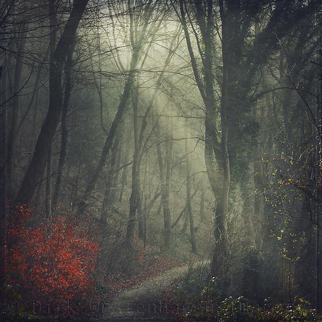 light.hike