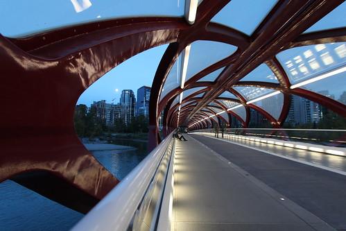 bridge calgary night peace time walk the a