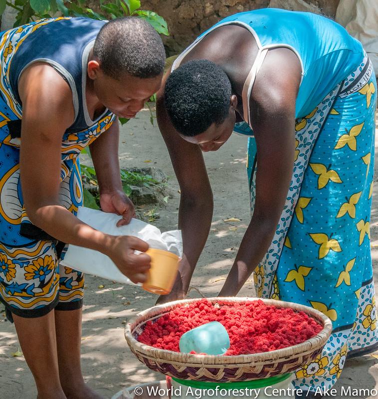 Some Indigenous fruits of Kilifi, Kenya | Flickr