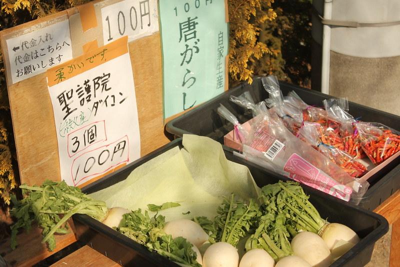 2014-02-01_00343_宝登山