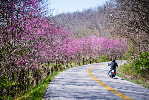 Riding redbud road | by sniggie